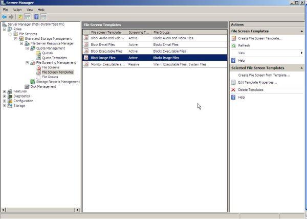 установленная роль файлового сервера в Windows Server 2008