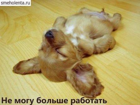 1178271824_pyatnica.jpg