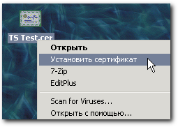 terminal_windows-_server_2008_27.png